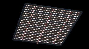 Big Cock Design Quantum Board Firefly 2.0 240W